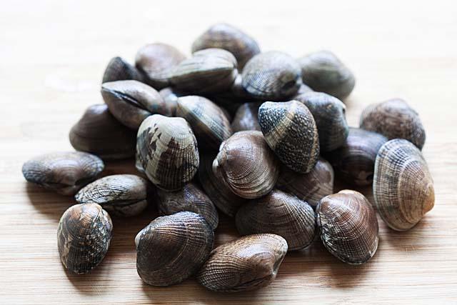 Manila clams for spaghetti alle vongole